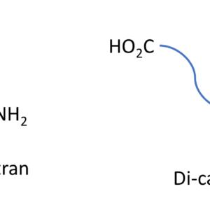 Bis-Functionalized Dextrans