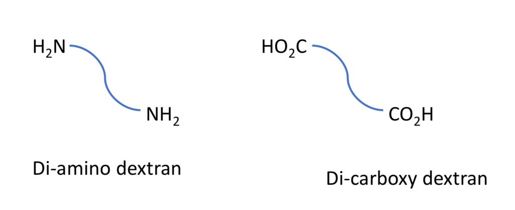 Di amino & Di carboxy dextrans